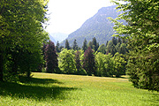 Europe, germany, bavaria, linderhof, linderhof castle, architecture, castle, castles, ludwig, king ludwig, tree, trees, mountain, mountains.