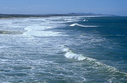 Australia, qld, queensland, sunshine coast, beach, beaches, wave, waves, coast, coasts, coastline, coastlines.