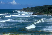 Australia, qld, queensland, sunshine coast, wave, waves, coast, coasts, coastline, coastlines, water, water scene, water scenes.