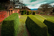 Garden, gardens, everglades, leura, blue mountains, great dividing range, nsw, new South Wales, hedge, hedges, hedging, wall, walls, garden wall, garden walls.