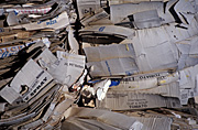 Australia, Recycle, Recycling, recycling paper, paper recycling, cardboard, paper, cardboard box, cardboard boxes.