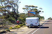 Australia, minnipa, eyre, eyre highway, road, roads, nullarbor, nullarbor plains, sealed, sealed road, sealed roads, tyre, tyres, highway, highways, sign, signs, tree, trees, caravan, caravans, car, cars, roadsign, roadsigns, road sign, road signs, eyre peninsula.