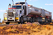 Australia, transport, transportation, vehicle, vehicles, heavy vehicle, heavy vehicles, truck, trucks, road train, road trains, roadtrain, roadtrains, sign, signs, wild, flower, flowers, wildflower, wildflowers, tall mulla mulla, mulla mulla, tall mulla-mulla, mulla-mulla, ptilotus, ptilotus exaltatus, outback, australian outback, outback australia, ptilotus exaltatusVF02,