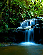 Australia, New South Wales, blue mountains, great dividing range, Leura, Leura Cascades, waterfall, waterfalls, forest, forests, rainforest, rainforests, fern, ferns, water, pond, ponds, creek, creeks, stream, streams, water, MG73,