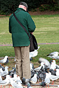 People, man, men, male, males, aged, old, elderly, old man, old men, aged man, aged men, elderly man, elderly men, elderly people, old people, aged people, bird, birds, pigeon, pigeons, seagull, seagulls.