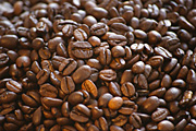 Agriculture, coffee, coffee bean, coffee beans, bean, beans, RM75,