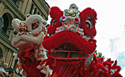 Australia, New South Wales, sydney, new year, chinese, chinese new year, chinatown.