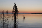 Australia, qld, queensland, maraboon, emerald, lake maraboon, lake, lakes, water, sunset, sunsets, sunrises and sunsets, mood, mood scene, mood scenes.