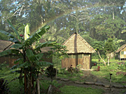 Amazon, rainbow, rainbows, jungle, jungles, hut, huts