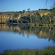 Australia, sa, south australia, river, rivers, walker flat, murray, murray river, water.
