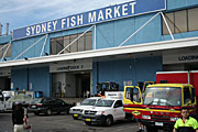 Australia, New South Wales, sydney, market, markets, sydney markets, fish market, fish markets, fish, sign, signs, car, cars, vehicle, vehicles, truck, trucks, dock, docks, architecture.