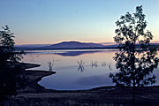 Australia, New South Wales, albury, hume, hume weir, weir, weirs, water, water storage, tree, trees, DB,