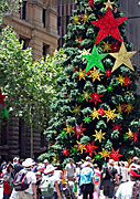 Australia, New South Wales, sydney, people, christmas, christmas scene, christmas scenes, martin place, christmas tree, christmas trees, crowd, crowds, star, stars.