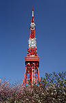 Asia, japan, tokyo, tokyo tower, tower, towers, structure, structures, metal, architecture, steel, steel construction, steel constructions, radio tower, radio towers, television tower, television towers, monolith, monoliths, iron monolith, iron monoliths, iron, royalty free images, rf, communication, communication tower, communication towers.