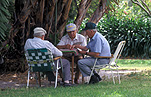 Man, men, male, males, old, elderly, aged, aged people, old man, old men, park, parks, elderly man, elderly men, cards, card game, card games, playing cards, outdoors, sydney, nsw, new South Wales, australia, chair, chairs, park, parks.