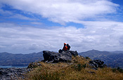 Pacific islands, new zealand, nz, akaroa, banks, banks peninsula, hiker, hikers, hiking, people.