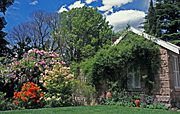 Garden, Gardens, Mount Wilson, lawn, lawns, blue mountains, great dividing range, NSW, New South Wales, great dividing range, Australia, house, houses, housing, architecture, cottage, cottages, cottage garden, cottage gardens, PF48,