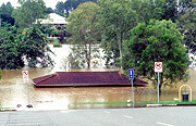 Climate, disaster, disasters, natural disaster, natural disasters, weather, flood, floods, flooding, flooded, river, rivers, sign, signs, tree, trees, water, gympie, queensland, qld, australia, emergency, emergencies, roof, roofs, rooves.