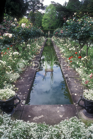 A royalty free image of formal garden pond edged with for Garden pond unlimited