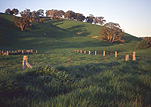 Australia, New South Wales, orange, rural, rural scene, rural scenes, hill, hills, green hill, green hills, fence, fences.