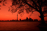 Canada, Toronto, Centre Island, Sunset, sunsets, sunrises and sunsets, mood, mood scene, mood scenes, architecture, tower, towers, CN tower, silhouette, silhouettes, tree, trees, FF25,