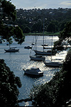 Australia, New South Wales, Sydney, Manly, Balgowlah, boat, boats, boating, yacht, yachts, yachting, mooring, moorings, moored yacht, moored yachts, water, FF25,