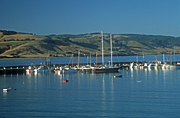 Australia, Vic, Victoria, Apollo Bay, Bay, Bays, Water, yacht, yachts, boat, boats, boating, harbour, harbours, otways, the otways, otway ranges, marina, marinas, dock, docks, FF25,