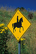 Sign, Signs, roadsign, roadsigns, road sign, road signs, Animal, Animals, Horse, horses, horserider, horseriders, horseriding, warning sign, warning signs, FF25,