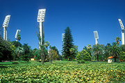 Australia, wa, western australia, perth, queens gardens, waca, waca cricket ground, cricket, Sport pictures, Sports, stadium, stadiums, light, lights, lighting, palm tree, palm trees, pond, ponds, FF25,