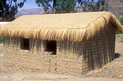 South America, architecture, window, windows, mud house, mud houses, mud brick house, mud brick houses, mudbrick house, mudbrick houses, roof, roofs, rooves, bolivia, candelaria, house, houses, housing, housing, roof, roofs, rooves.