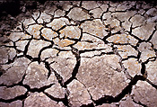 Climate, weather, drought, drought scene, drought scenes, disaster, disasters, natural, natural disaster, natural disasters, mud, cracked mud, dried mud, australia, outback, australian outback, outback australia, NT, Northern Territory, crack, cracks, cracked, cracking.
