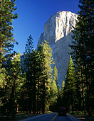 America, USA, United States, United States of America, California, National Park, National Parks, Yosemite, Yosemite NP, Yosemite National Park, el capitan, mountain, mountains, road, roads, sealed road, sealed roads, tree, trees, forest, forests, woods, FF25,