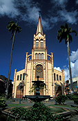 Caribbean, the caribbean, carribean islands, martinique, port de france, palm, palms, palm tree, palm trees, cathedral, cathedrals, cathedral st louis, st louis, religious building, religious buildings, religion, steeple, steeples, spire, spires, architecture, FF25,
