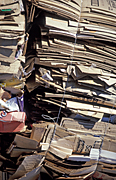 Australia, recycle, recycles, recycling, paper, recycling centre, recycling centres, paper recycling, cardboard, paper, cardboard box, cardboard boxes, reycling paper.