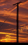 Pole, poles, utility pole, utility poles, telephone pole, telephone poles, power pole, power poles, power line, power lines, communicate, communicating, communication, electricity pole, telephone, telephones, electricity poles, telegraph pole, telegraph poles, telegraph line, telegraph lines, qld, queensland, childers, sunset, sunsets, sunrises and sunsets, mood, mood scene, mood scenes.