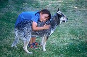 Child, Children, people, female, females, girl, girls, Animal, Animals, people and animals, children and animals, people with animals, children with animals, dog, dogs, pet, pets, domestic animal, domestic animals, heeler, heelers, blue heeler, blue heelers, cattle dog, cattle dogs, cattledog, cattledogs, hug, hugs, hugging, cuddle, cuddles, cuddling, embrace, embraces, embracing, children and animals, people and animals, children with animals, people with animals.