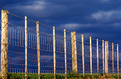 Australia, New South Wales, norfolk island, airport, airports, fence, fences, barbed wire, barbed wire fence, barbed wire fences.