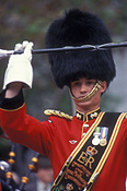 people, guard, guards, uniform, uniforms, hat, hats, soldier, soldiers, queens guards, queens guard, parade, parades, man, men, male, males, hat, hats, glove, gloves.