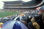 Australia, Sport pictures, Sports, stadium, stadiums, arena, arenas, sports arena, sports arenas, sports stadium, sports stadium, weather, rain, rains, raining, football, western australia, oval, ovals, grand final, grand finals, subiaco, wa, people, crowd, crowds, umbrella, umbrellas, sports ground, sports grounds, seat, seats, seating.