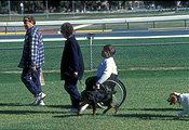 Australia, people, RSPCA, man, men, male, males, outdoors, disabled, disability, disabilities, disabled people, medical equipment, wheelchair, wheelchairs, paraplegic, paraplegics, handicapped, handicapped people, charity, charities, rspca, million paws, million paws walk, animal, animals, dog, dogs, adelaide, sa, south australia.