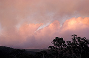 Australia, New South Wales, westleigh, smoke, haze, hazes, fire, fires, bushfire, bushfires.