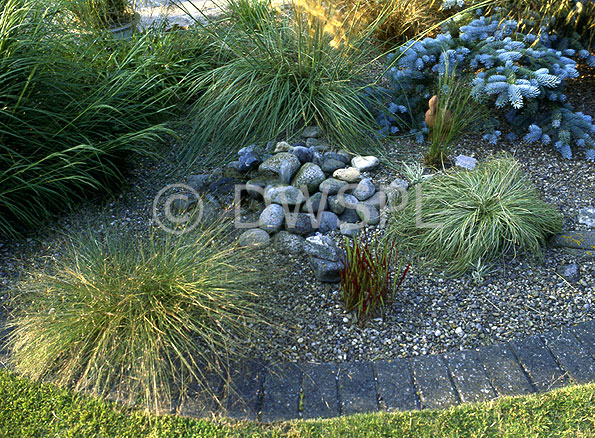 Garden water features quotes for Garden pond quotes