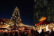 Europe, Germany, Cologne, Cologne cathedral, Architecture, gothic, Altstadt, Altstadt market, Altstadt markets, christmas, christmas scene, christmas scenes, tree, trees, christmas tree, christmas trees, FF25,