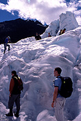 NZ, New Zealand, south island, people, glacier, glaciers, fox glacier, winter, winter scene, winter scenes, snow, cold, coldness, snow scene, snow scenes.