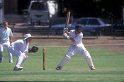 Australia, australian, people, Sport pictures, Sports, cricket, cricket game, cricket games, man, men, male, males, outdoors.