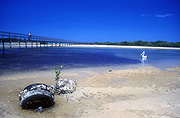 Australia, New South Wales, Urunga, Urunga lagoon, lagoon, lagoons, tide, tides, tidal, low tide, low tides, water, water scene, water scenes, coast, coasts, coastal, coastline, coastlines, seashore, seashores, shoreline, shorelines, water, jetty, jetties, pier, piers, pelican, pelicans, tyre, tyres, barnacle, barnacles, polution, water pollution.