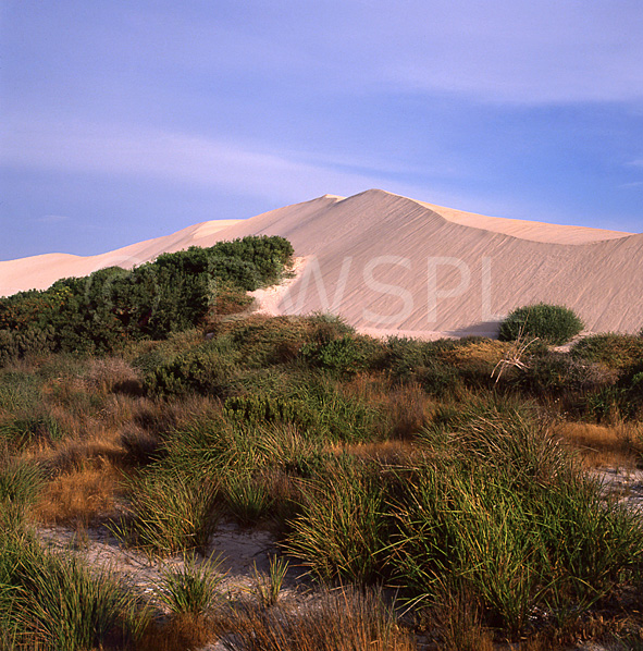 stock photo image: Australian deserts, Sand dunes, Outback Australia, Sleaford Bay, Port Lincoln, South Australia