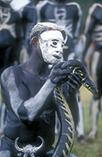 New guinea, papua new guinea, mount hagen, mt hagen, mount hagen show, mt hagen show, ceremony, ceremonies, man, men, male, males, people, performer, performers, mask, masks, body paint, bodypaint, tribe, tribes, tribal, reptile, reptiles, snake, snakes.