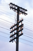 Pole, poles, utility pole, utility poles, telephone pole, telephone poles, power pole, power poles, power line, power lines, communicate, communicating, telephone, telephones, communication, electricity pole, electricity poles, telegraph pole, telegraph poles, telegraph line, telegraph lines.
